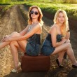 Two pretty girl, sitting on suitcase at countryside — Stock Photo #28894873