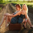 Two pretty girl, sitting on suitcase at countryside — Stock Photo