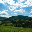 Panorama of the summer landscape in the Carpathian mountain — Stock Photo