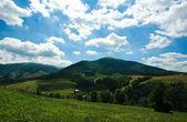 夏天风景在喀尔巴阡山的全景 — 图库照片