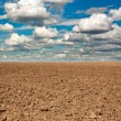 Dry plowed earth agricultural land — Stock Photo