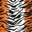Stock Vector: Tiger skin