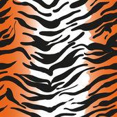 Tiger skin — Stockvector