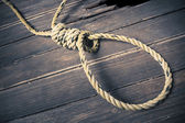Hangman noose on the floor — Stock Photo