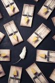 Múltiplas ratoeiras com queijo sobre um fundo escuro — Foto Stock