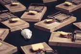 暗い背景の上にチーズと複数のマウスのトラップ — ストック写真