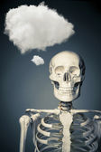 Human skeleton thinking on a grey background — Stock Photo