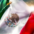 Mexican Flag Independence day — Stock Photo #45905181