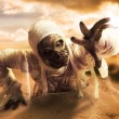Scary mummy in a desert at sunset — Stock Photo #45905659