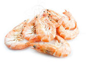 Shrimps with shells over white background — Стоковое фото