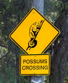 Possums Crossing Sign — Stock Photo