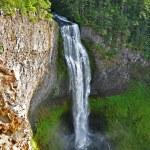 Salt Creek Falls — Stock Photo #13375060