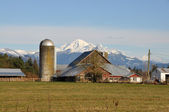 Farm and Mount Baker — Stock Photo