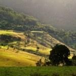 ������, ������: Rolling Hills