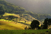 Rolling Hills — Stock Photo