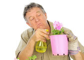Nurseryman Sprays Seedlings — Stock Photo
