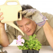 Dedicated Gardener - Stock Photo