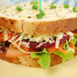 Jumbo Salad Sandwich — Stock Photo