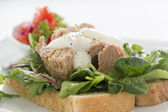 Open Tuna Salad Sandwich — Stock Photo