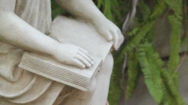 Girl Reading Statue — Stock Video