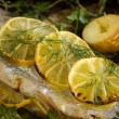 Lemon On Trout Fillet — Stock Photo #46198411