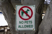 No pets sign — Stock Photo