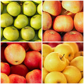 The colorful apples in the collage — Stock Photo