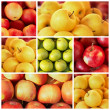 The ripe apples in the collage -  