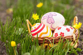 Easter Eggs in basket on grass — Stock Photo