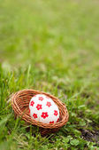 Easter Eggs in basket on grass — Stockfoto