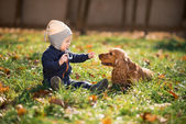 Boy sitting on the grass with a dog — Stock Photo