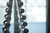 Metal dumbbells are at the front — Stock Photo
