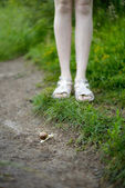 Small snail crawling across the path — Foto de Stock