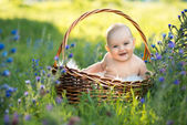 Small naked smiling child sitting in a basket — Stockfoto