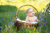 Small naked smiling child sitting in a basket — ストック写真