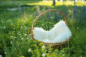 Wicker basket in the grass with white bedding — Foto de Stock