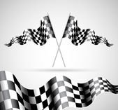 Checkered Flags — Stock Vector