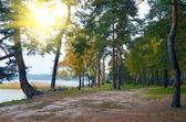 Matin sur le lac — Photo