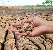 Soil in farmer hand — Stockfoto