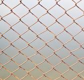 Clôture de fil de Barb — Photo