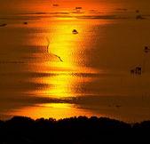 Západ slunce v chonburi thajsko — Stock fotografie