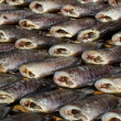 Drying snakeskin gourami fishes — Stock Photo #33781577