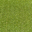 Artificial rolled green grass — Foto Stock