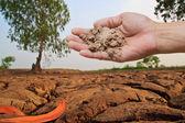 Soil in farmer hand — Foto de Stock