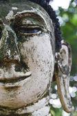древний будда лицо, аюттхая, таиланд — Стоковое фото