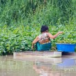 Old woman rows to pick Water morning glory — Stock Photo