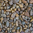 Fragment of the beach with lots of pebbles — Stock Photo