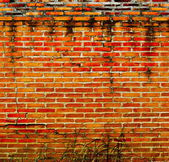 Background of an old brick wall — Stock Photo
