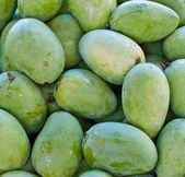 Mango fruit , thailand — Stock Photo
