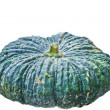 Green pumpkin fruit — Stock Photo